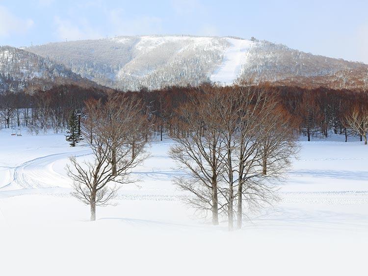 気になるコースを滑り放題! 圧倒的なスケールの志賀高原スキー場