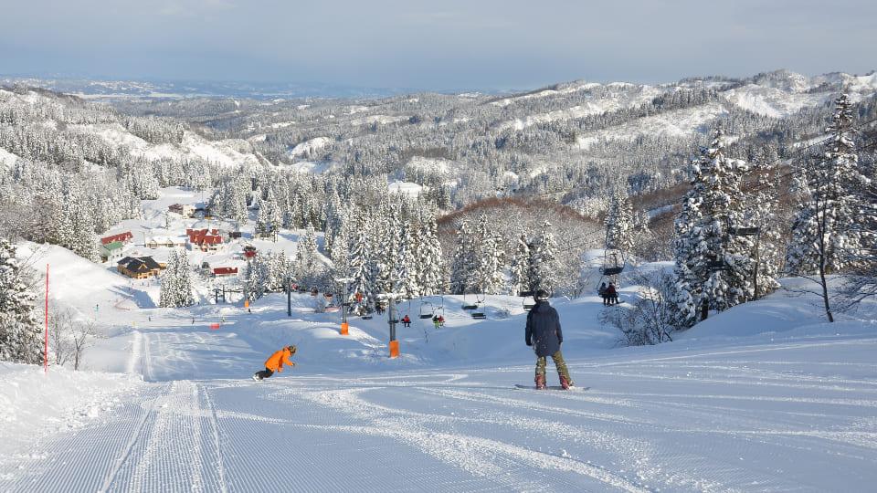 上越国際スキー場イメージ