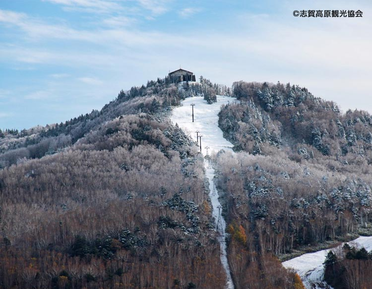 各地より雪のお知らせ