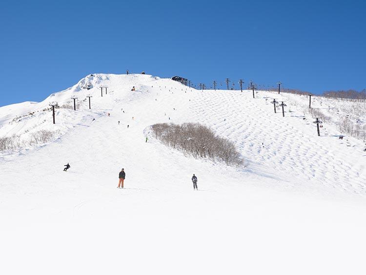 キッズもベテランも満足の滑走! 白馬八方尾根スキー場の魅力に迫る