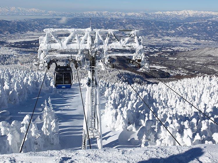 コース多数! 東北最大級を誇る蔵王温泉スキー場
