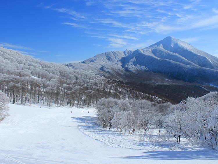 極上のミクロファインスノーを堪能せよ! 猫魔スキー場